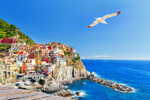 Manarola, Italy, National Park Cinque Terre, UNESCO World Heritage List. Seagull Soar Over  Gorgeous Panorama Of Coastal Village Manarola. Idyllic Picturesque Scenery, Vacation Background. Landmark.