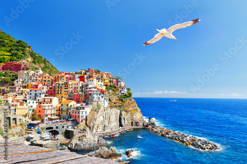 Staande foto Liguria Manarola, Italy, National Park Cinque Terre, UNESCO world heritage list. Seagull soar over gorgeous panorama of coastal village Manarola. Idyllic picturesque scenery, vacation background. Landmark.