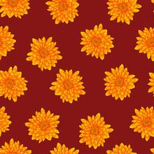 Yellow Chrysanthemum On Red Background