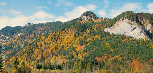 Cuadros en Lienzo bewaldeter Berghang mit Fichten und bunten Laubbäumen im Herbst