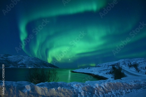 Poster Aurore polaire The northern lights (Aurora Borealis) over Seljelvnes, Troms by the sea and the snowy mountains