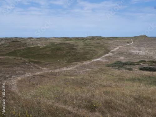 Fotobehang Cappuccino Dunes. Coast Netherlands. Julianadorp.