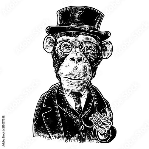 Naklejka premium Dżentelmen małpa trzymający zegarek i ubrany kapelusz, garnitur. Rytownictwo