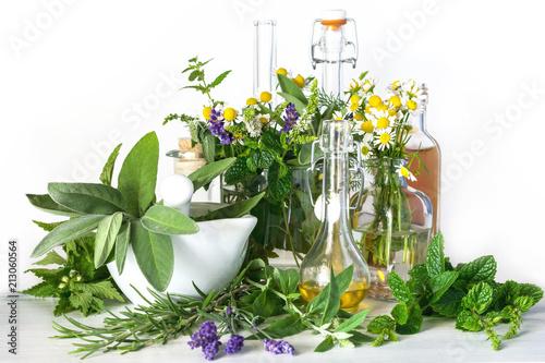 Heilpflanzen und Heilkräuter, ätherische Öle, Mörser und Fläschchen auf weißem Holz, grüne Medizin, Alternativmedizin