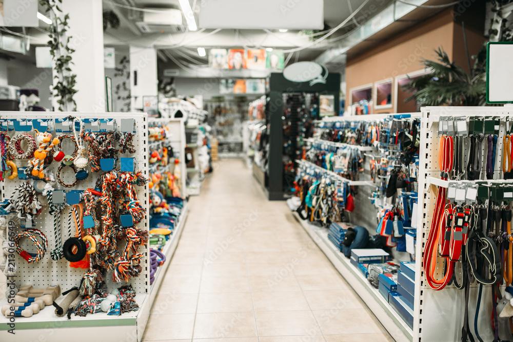 Fototapeta Pet shop interior, shelves with accessories