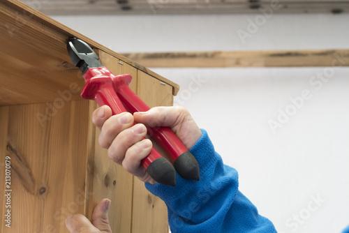Persona que utiliza una tenaza para extraer clavos de la madera Wallpaper Mural