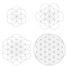 Set Of Geometrical Elements And Shapes. Sacred Geometry Flower Of Life Development. Vector Designs