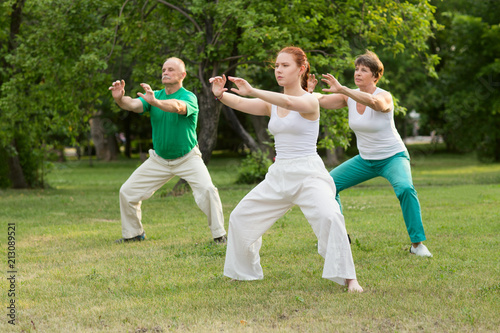 Fotografía  group of people practice Tai Chi Chuan in a park