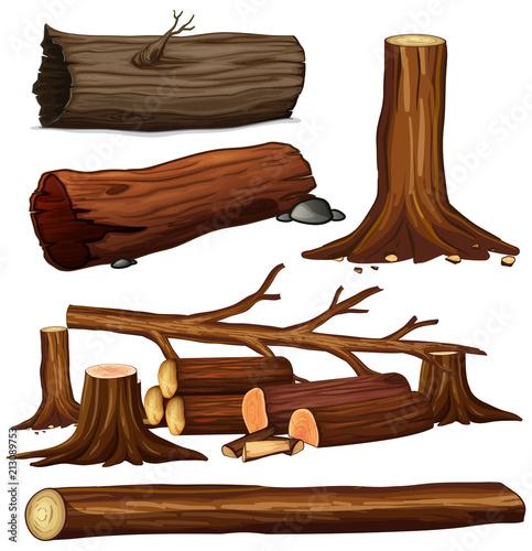 Foto op Plexiglas Kids A Set of Tree Wood