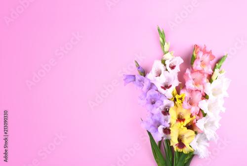 Beautiful gladiolus flowers on trendy pink background. Billede på lærred