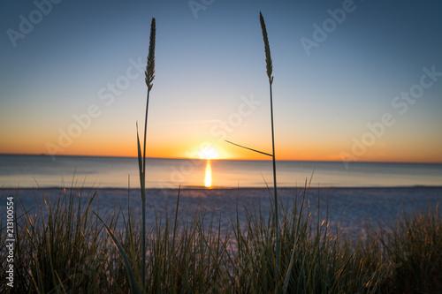 Plakát  The Sunset