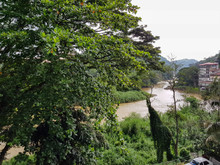 View Of The River Mahaweli Gan...