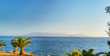 Turkey Aegean Sea coast. Sea view between palm trees and trees