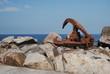 Acessório de guindaste á beira mar