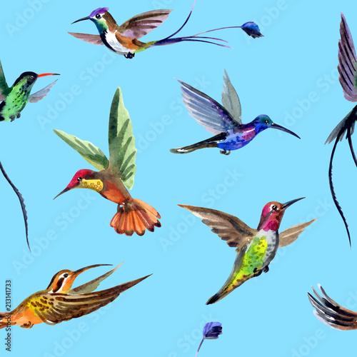 bezszwowy-akwarela-wzor-od-wielobarwnych-kolibrow