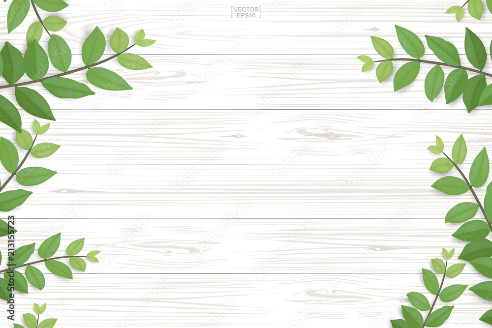 Fototapeta Wood plank pattern and texture with green leaves for natural  background. Abstract background for product presentation. Realistic vector.