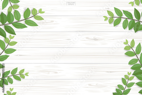 Fotografía  Wood plank pattern and texture with green leaves for natural  background
