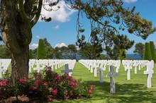 9000 Graves