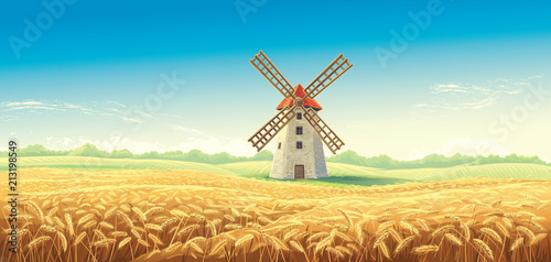 Obraz Rural summer landscape with windmill and wheat field. Vector illustration. - fototapety do salonu