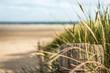 canvas print picture - Als erster am Strand