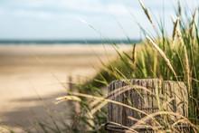 Als Erster Am Strand
