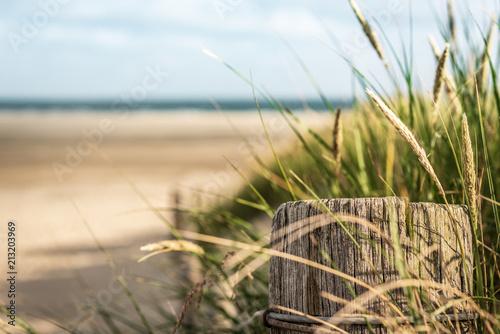 Obraz Als erster am Strand - fototapety do salonu
