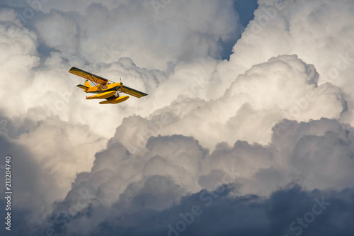 Seaplane flying in the cloudy sky Wallpaper Mural