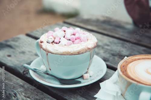 A luxury hot chocolate drink in a posh cup and saucer with whipped cream and marshmallows melting on top