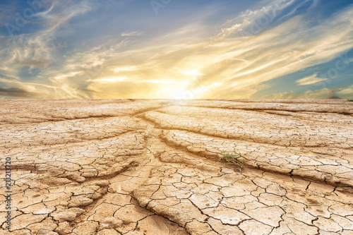 Fotografie, Obraz Brown dry soil or cracked ground texture on blue sky background with white clouds sunset