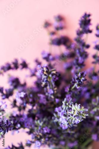Foto op Plexiglas Weide, Moeras Lavender flower, violet Lavender flowers on a pink background. Lavandula.