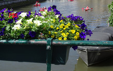 Mini Bike In The Flowers, View On The Graslei, Ghent