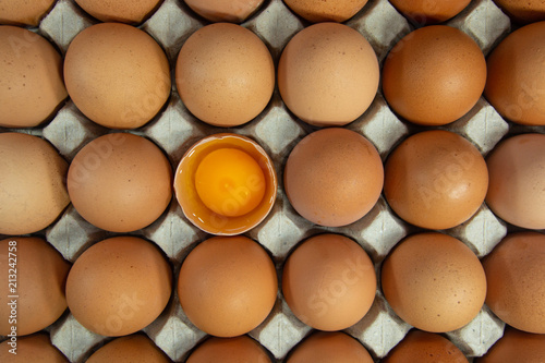 cracked chicken eggs in carton box with albumen and yolk . Canvas Print