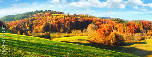 Leinwanddruck Bild - ExQuisine : Schwarzwald im Herbst