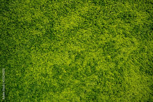 Foto op Plexiglas Groene Green Carpet Background