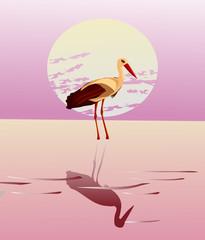 Fototapeta Ptaki Vector illustration of a stork in the background of the sun