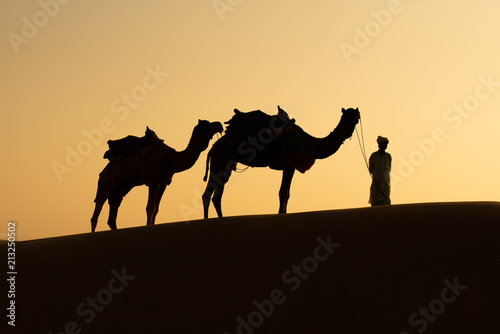 Photo  Rajasthan travel background - Indian cameleers (camel drivers) with camels silhouettes in dunes of Thar desert on sunset