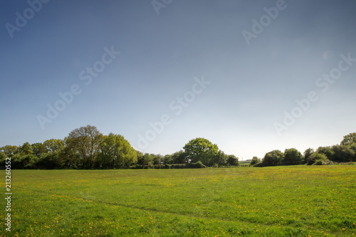 Foto op Canvas Platteland landscape of green fields