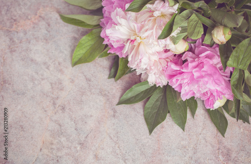 Obraz na plátně  Delicate pink and white peonies lie on a marble table