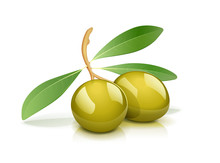 Two Green Olive With Leaf. Oil Natural Vegetarian Product.