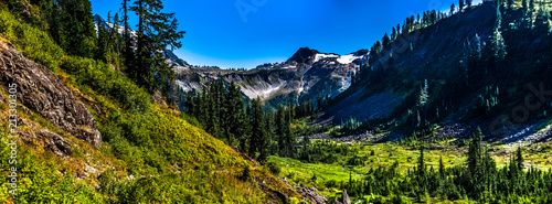 Photo Beautiful wide shoot of snowy peak along the trail towards Mount Baker, Washington, USA
