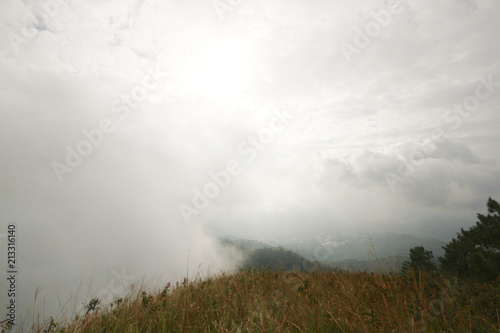 Foto op Aluminium Wit Beautiful landscape natural light in the morning fog and blue sky on the mountain and the sunrise shining to the mist in forest northern of Thailand.