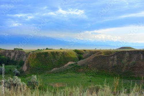 Foto op Aluminium Blauwe hemel Summer landscape, Burunday, Almaty