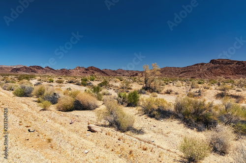 Poster Beige Desert Landscape