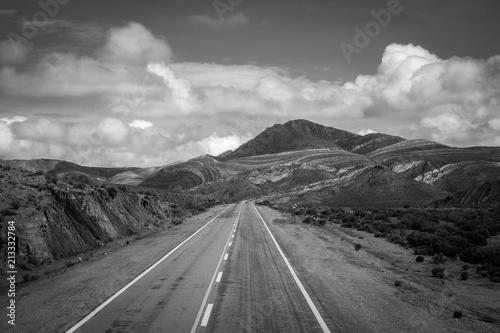 Foto op Aluminium Centraal-Amerika Landen Desert road in north Argentina quebrada