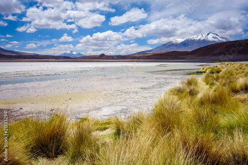Foto op Aluminium Centraal-Amerika Landen Laguna Honda in sud Lipez Altiplano reserva, Bolivia