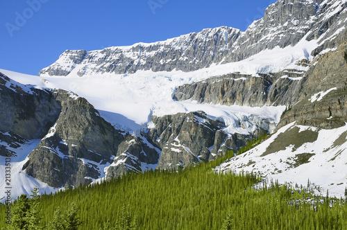 Fotobehang Gletsjers Crow foot glacier.