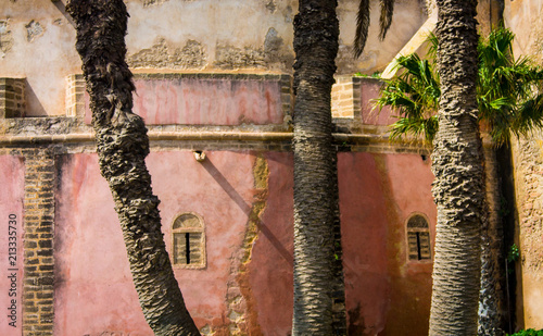 In de dag Afrika Palm trees and the pink wall of Medina in Essaouira. Africa, Morocco, the old city