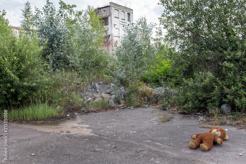 Lost plush bear in an abandoned factory