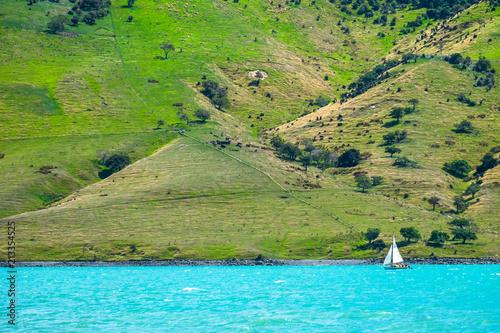 Foto op Canvas Pistache Beautiful landscape of a peninsula. Fresh ocean and grassland mountain and a sailboat.