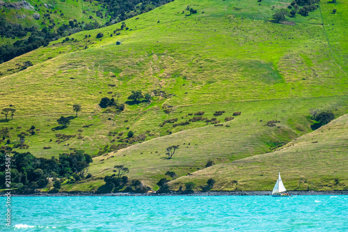 Tuinposter Pistache Beautiful landscape of a peninsula. Fresh ocean and grassland mountain and a sailboat.